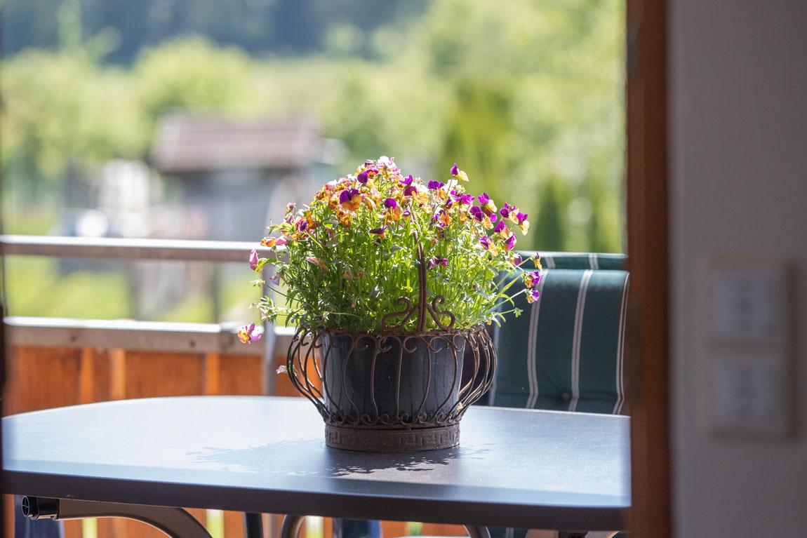 2020-05-ferienhof-sonnenschein-alpenblick-balkon2